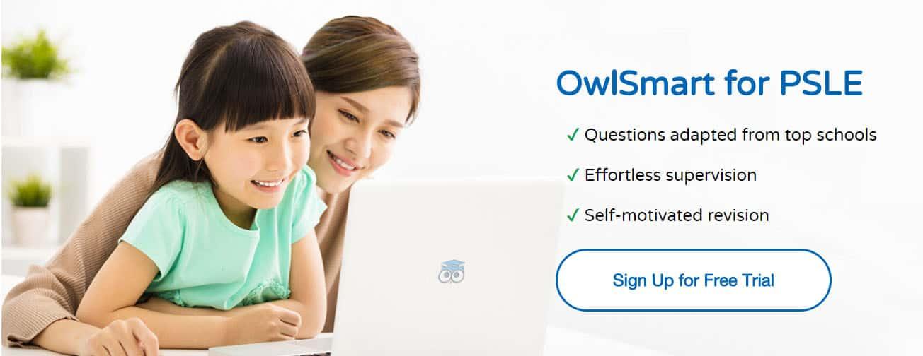 Owl Smart